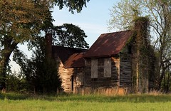 Under the oak tree, late 1700s (ariel is . . .) Tags: virginia va empty abandoned late18thcentury late1700s cutelittlemousehouse oaktree oldhouse tinroof stonechimneys