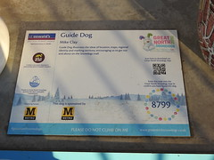 DSCN6305 (stamford0001) Tags: great north snow dogs shields fish quay snowdogs st oswalds hospice