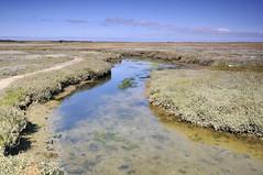 De Slufter, Texel (jan_vrouwe) Tags: texel deslufter sea dune