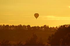 Balloon & Sunset (dtroi17) Tags: ballon herbst bume dorf landschaft felder autumn landscape field trees sky balloon sunset
