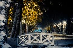 Winter bridge (Lucian Nuță) Tags: cluj napoca clujnapoca romania winter cetatuie parcul central