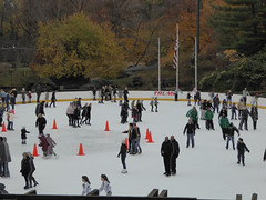 Central Park New York November 2016 (1227) (Richie Wisbey) Tags: new york central park manhattan ulmsted man made vista view spectacular miles walks lakes ice rink trump feeding sparrows hot dog american space open public beauty bow bridge oak trees grass richie richard wisbey flickr explore exploring zoo
