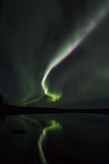 Aurora over Mid Lake (She Likes Odd) Tags: midlake aurora auroraborealis auroralarc northernlights northernmanitoba thompson manitoba nightsky nightphotography astrophotography canon60d canoneos60d canonphotography tokina1116mm tokina spaceweather geomagneticstorm