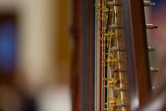 e♭ - e♮ - e♯ (mjwpix) Tags: e♭e♮e♯ doubleactionpedalharp pedalharp harp pedaldiscs strings musicalinstrument michaeljohnwhite mjwpix canoneos5dmarkiii ef70200mmf28lisiiusm tuningpins dof
