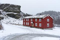 Sverresborg Folk Museum, Trondheim, Norway (Ingunn Eriksen) Tags: sverresborgfolkmuseum sverresborgfolkemuseum trondheim trøndelag norway winter snowing redhouse building