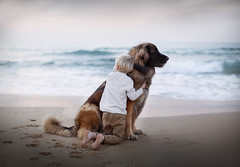 Please, don't go (sveta_butko) Tags: child boy dog sea shore beach friendship childhood