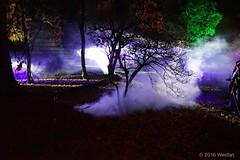 DSC04221 (Twareg) Tags: 2016 aboretum bpw enchanted forest westonbirt bathphotowalk gloucestershire england
