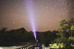 Stars Meet Mia (tmasss) Tags: light sky nature way stars florida miami space explore galaxy everglades flashlight astronomy evergladesnationalpark milky exploreeverything