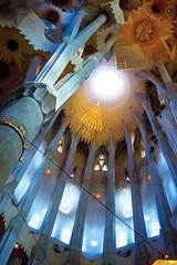 Even with your head tilted back... (overseastom) Tags: barcelona geometric 50mm md cathedral minolta columns ceiling gaudi organic sagradafamilia f1750mm rokkorx