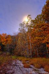 Color Tour ... moonset (Ken Scott) Tags: autumn usa fall october michigan fallcolors lakemichigan greatlakes hdr moonset freshwater voted leelanau colortour 2015 45thparallel sbdnl sleepingbeardunenationallakeshore mostbeautifulplaceinamerica