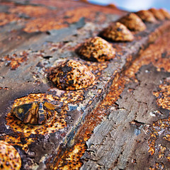 Rusted Rivets [Explored] (Kate H2011) Tags: uk sky texture metal closeup square rust outdoor rusty depthoffield diagonal explore dragan 2015 500x500 bsquare explored canonefs1855mmf3556 katehighley