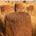 Senegambia's megaliths