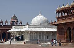 16 3373 - Inde, Fatehpur Sikri, la Tombe de Sheikh Salim Chishti (jeanpierreossorio) Tags: inde mosque tombe tombeau mausole