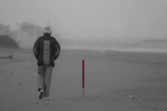 Rimini, Novembre (::claudiomussoni) Tags: mare rimini nebbia inverno autunno freddo spiaggia