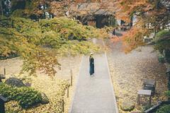 autumn (another side view) Tags: autumn woman art nature japan female 50mm nikon natural f14 sigma autumnleaves autumncolor artline naturelight naturepeople womanportrait nikondf 50mmart