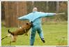 First Von King Von Backdraft RINALDI V  -0918 (Fab Photos Canine et Sportive) Tags: king von first backdraft