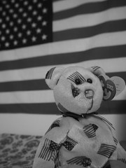 PC140078 (mina_371001) Tags: america flag memories american teddybear souvenior nationalflag loveamerica photographywork olympusomdem10