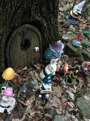 Here there be gnomes (Scruffy Mynxbane) Tags: park wood robin woods state great hike owl migration gnomes owls horned nockamixon