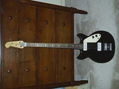 signature bass 2519