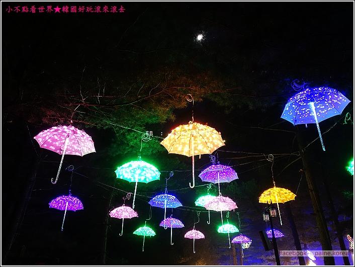 晨靜樹木園 五色星光庭園展 (37).JPG