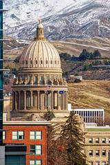 Idaho State Capitol (fandarwin) Tags: winter fan state darwin olympus idaho boise capitol omd em10 fandarwin