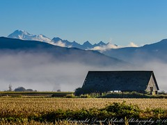 Barn (dschultz742) Tags: 10092016 d810 nature outdoor bucolic fog country farm barn mountains mountbaker 150600mmf563dgoshsm|c