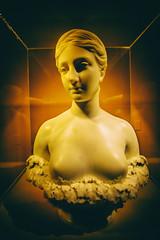 Marry Me (Thomas Hawk) Tags: america hirampowers milwaukee milwaukeeartmuseum proserpine usa unitedstates unitedstatesofamerica wisconsin marble sculpture fav10