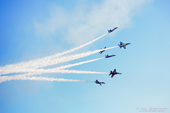 I  the Blue Angels (Lisa Simpson Photography) Tags: 2016 california sanfrancisco airshow bayarea fall autumn october lisasimpsonphotography digitalwonderlandphotography blueangels fa18hornet fleetweek jet military navy travelisa presidio usa