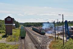 DSC08017 (Jani Järviluoto) Tags: kiuruvesi pai pai6331 dv12 dv122549 dv122630