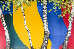 *** (Alex Toutaeff) Tags: city street color yellow blue red trees green white abstract wall walls
