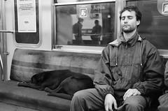 Descansando (Manutero) Tags: street people dog perro subte blackandwhite blancoynegro resting descansando durmiendo