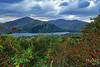 Ireland - Fushia and Mountains (WMJ614) Tags: ireland fushia mountain field green plant lake water sky clouds healypass healeypass flower hill landscape panasonic lumix fz1000