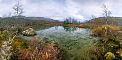 """Copper"" lake at Khibiny mountains (A. Stavrovich) Tags: 2016 russia lakes swamp panorama scenery khibiny mountains autumn september hdr"
