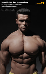 PHICEN PL2016-M34 Male Muscular Builder - 01 (Lord Dragon ) Tags: 16scale 12inscale onesixthscale actionfigure doll hot toys phicen seamless male body