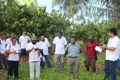 REDD+ expert training course, Kokopo, East New Britain, Papua New Guinea (unredd.photo) Tags: papua new guinea redd fcpf