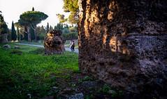 (massimopisani1972) Tags: appia antica via viaappiaantica appiaantica roma rome italia italy massimopisani massimo pisani nikon d610 20300
