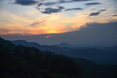 DSC_3206 (UdeshiG) Tags: mountain hike hillcountry teaestate mist sambar eagle hortonplains ohiya sunrise sky haputale nikon trek adisham