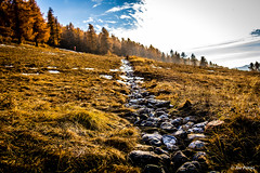 Follow the stones (joe petruz) Tags: tree sunset landscape mountain forest autumn yellow fields layer canon eos 650d sestriere italia piemonte aosta sun snow stones nature frame sunny trees cloud sky exploration