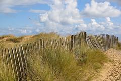 Time flies by (sarah_presh) Tags: walberswick fence dunes sand sky seaside coast kite nikond750 clouds suffolk england