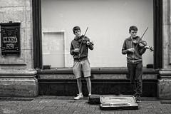 (...) (ngel mateo) Tags: ngelmartnmateo ngelmateo irlanda dubln msicos hermanos gemelos pelirrojo violn msica msicaenlacalle duo ireland dublin musicians brothers twins redhead violin music musiconthestreet eire erin irish  busking