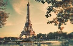 Tout sur la Dame de Fer (Tour Eiffel) (voulez_trans) Tags: tout sur la dame de fer tour eiffel toureiffel paris restaurant salon gustave gustaveeiffel 58toureiffel bar champagne pavillon ferrie jules verne