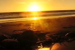 (florianselchow) Tags: landscape beach sunset cambria nex sony