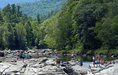 a day at the rapids (paul millie) Tags: nature swimming adirondacks rivers northcountry ausableriver jaynewyork