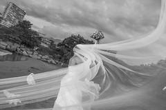 BODA DAYANA MI WEB-16 (amadoclarophoto) Tags: boda playa erick dayana 2014