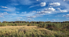 Backwoods (andrey.senov) Tags: autumn trees sky fall field clouds forest fuji russia september fujifilm province backwoods     kostroma   xa1    35faves    kostromaregion  fujifilmxa1