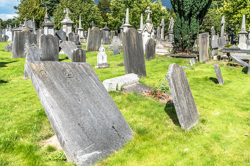 GLASNEVIN CEMETERY [MY FIRST DAY USING THE NEW SONY A7RMkII] REF-107418