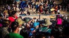 DSC01213 (mliulau) Tags: beach fun sydney sunny bondibeach festivalofthewinds paperplanes