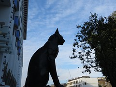 Black cat (moley75) Tags: london nw camden artdeco morningtoncrescent stpancras carrerascigarettefactory