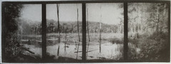 Rad's swamp tetraptych (bromoil) (efo) Tags: bw bromoil tetraptych hamptonct penorama efogl