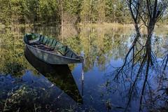 Specchio di cielo (Metallico1980) Tags: ticino fiume acqua trasparenze barchino lanca